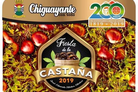 Festival De La Castaña
