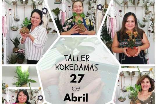 Taller Kokedamas
