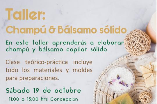 Taller: Champú Y Bálsamo Sólido