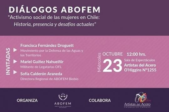 Diálogo Abofem: Activismo Social De Las Mujeres En Chile