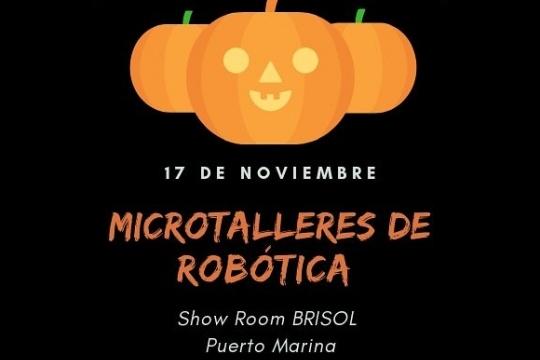 Microtalleres De Robótica
